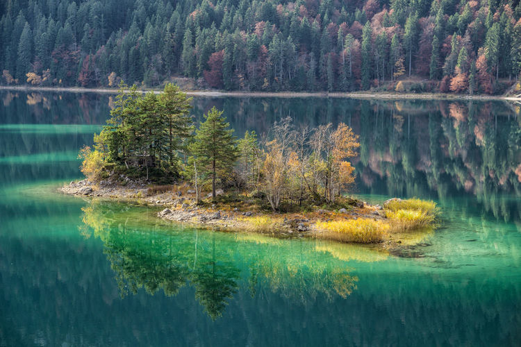 Island in Eibsee Water Lake Reflection Scenics - Nature Tree Tranquil Scene Beauty In Nature Plant Tranquility Forest Nature Land No People Waterfront Green Color Day Non-urban Scene Idyllic Landscape WoodLand Outdoors Pine Tree Coniferous Tree Pine Woodland Island Autumn Bavaria Alps