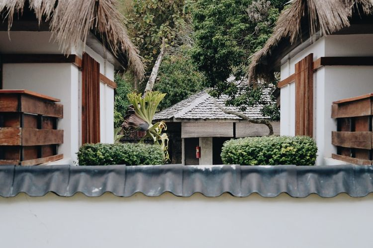 Architecture Building Building Exterior Built Structure Cottage Day Green Color Growth House Nature No People Outdoors Place Of Worship Plant Residential District Roof Roof Tile Thatched Roof Tree Window Wood - Material
