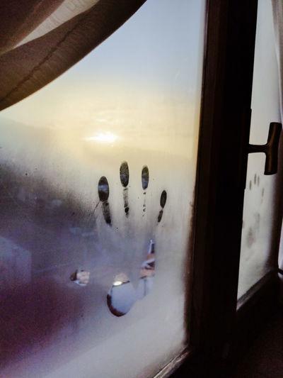 Close-up of fingerprints on wet window