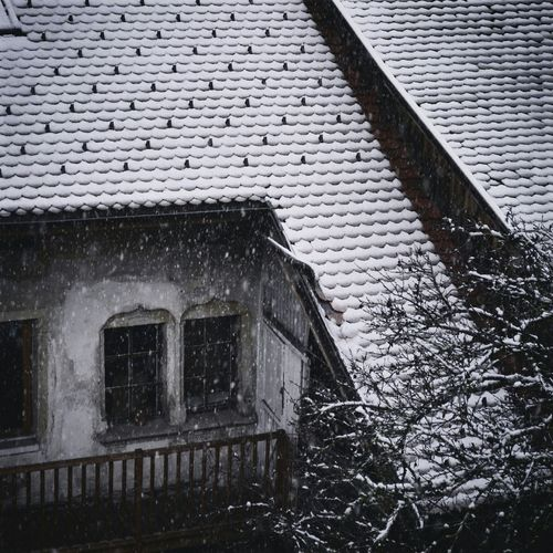 How's The Weather Today? Blackandwhite Roof Snow Snowflakes Winter Cold Snowing