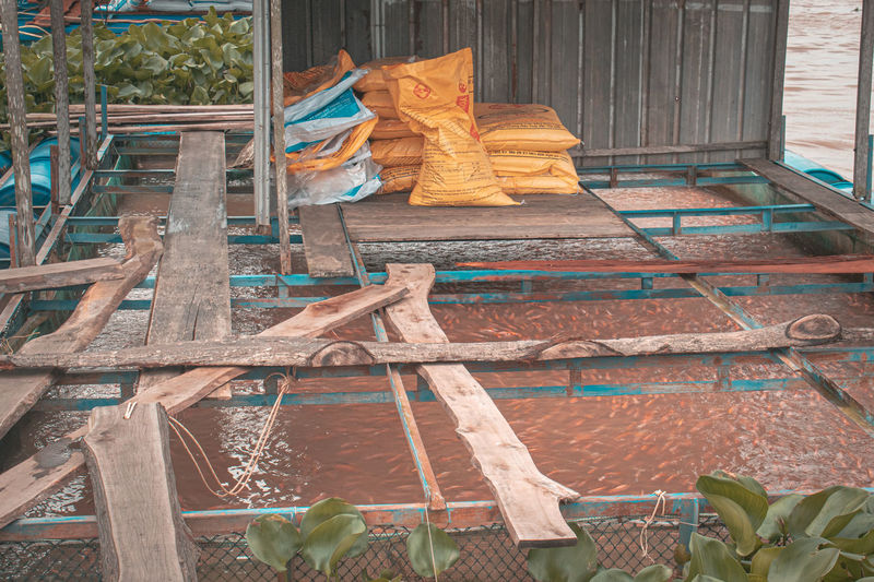 Fish farm in vietnam