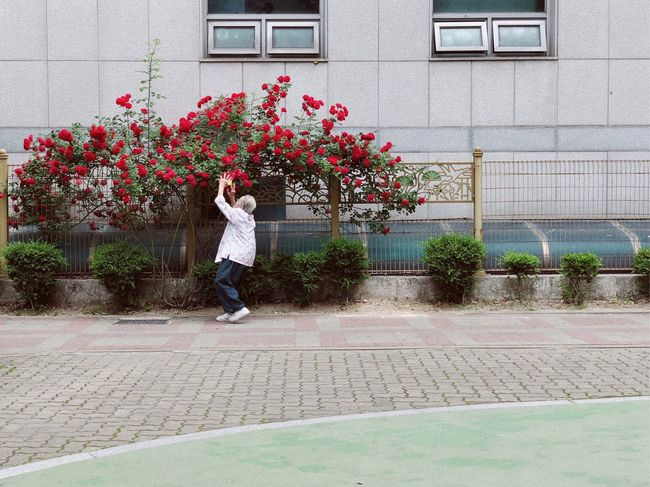 Full Length One Person Plant Flower Building Exterior Architecture Flowering Plant The Street Photographer - 2018 EyeEm Awards