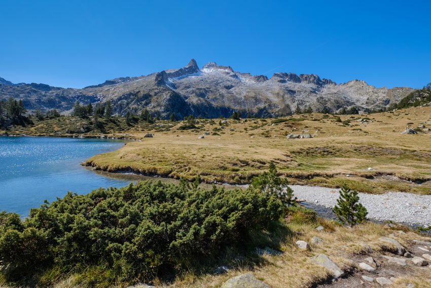 Lake in the Neouvielle massif, french Pyrenees France Pyrenees Beauty In Nature Blue Clear Sky Day Growth Lake Landscape Mountain Nature Neouvielle No People Occitanie Outdoors Plant Rock - Object Scenics Sky Tranquil Scene Tranquility Tree Water