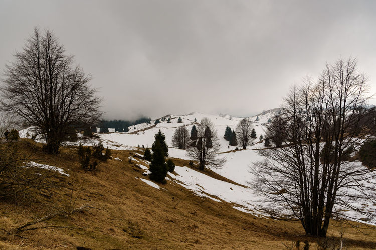 Erve Erve Miozzo Photo Miozzo Mountain Non-urban Scene Landscape No People Environment Nature Tranquil Scene Cloud - Sky Tranquility Scenics - Nature Winter Plant Tree Beauty In Nature Bare Tree Sky Snow Cold Temperature Snowcapped Mountain Land Outdoors