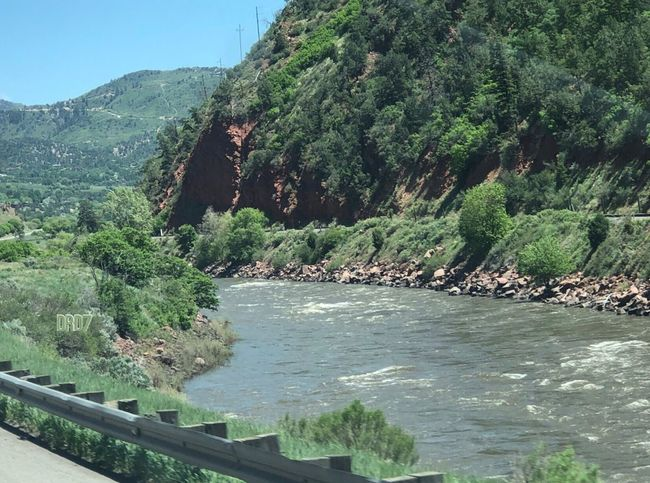 River Flow Tree Plant Water Scenics - Nature Tranquility Summer Road Tripping
