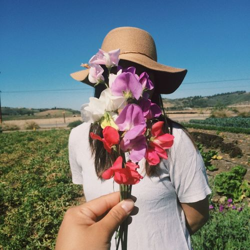 Midsection of person holding red flowering plant on field