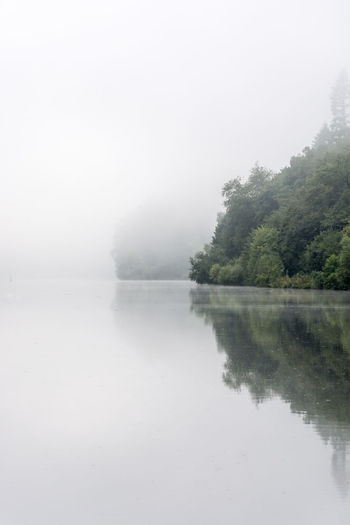Morning at the river ... Mirror Morning Beauty In Nature Day Fog Free Space For Text Lake Nature No People Outdoors Reflection River Scenics Simple Sky Tranquil Scene Tranquility Tree Water