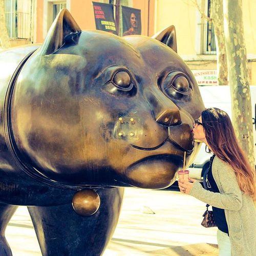 Kissing gatito Kittycat Gato Gatito Cat Ravalcat Rambladelraval Barcelona Catalunua Fuckoffbitch Fuckit Gangsta