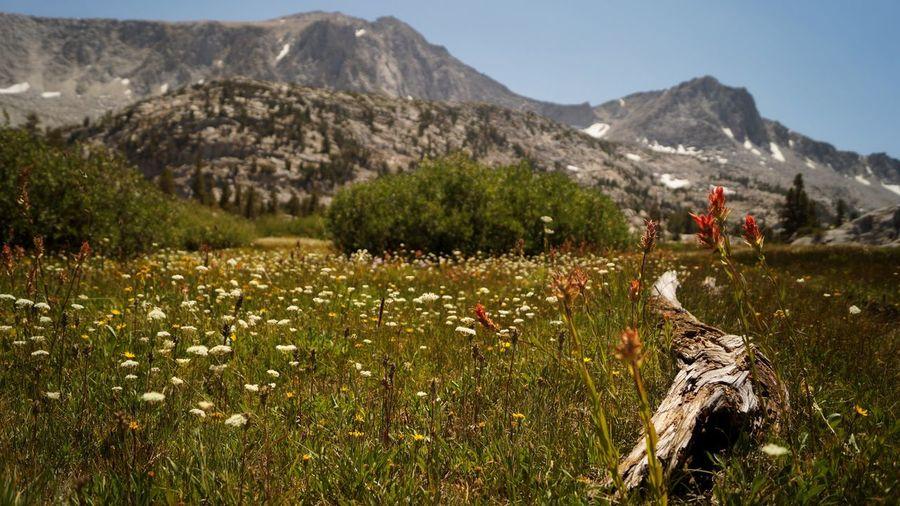 Wild places. Photo365 Project 365 Project365 Project366 DSLR Landscapes Landscape_photography Landscape_Collection Landscape Outdoors Alpine Nature