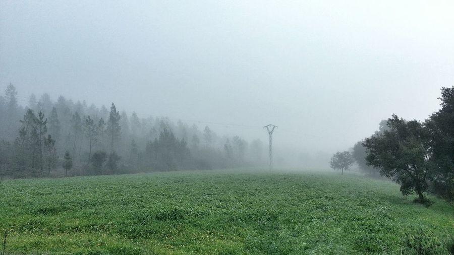 Fog Niebla La Codosera Paisaje Landscape Naturaleza Nature SPAIN España Extremadura Badajoz
