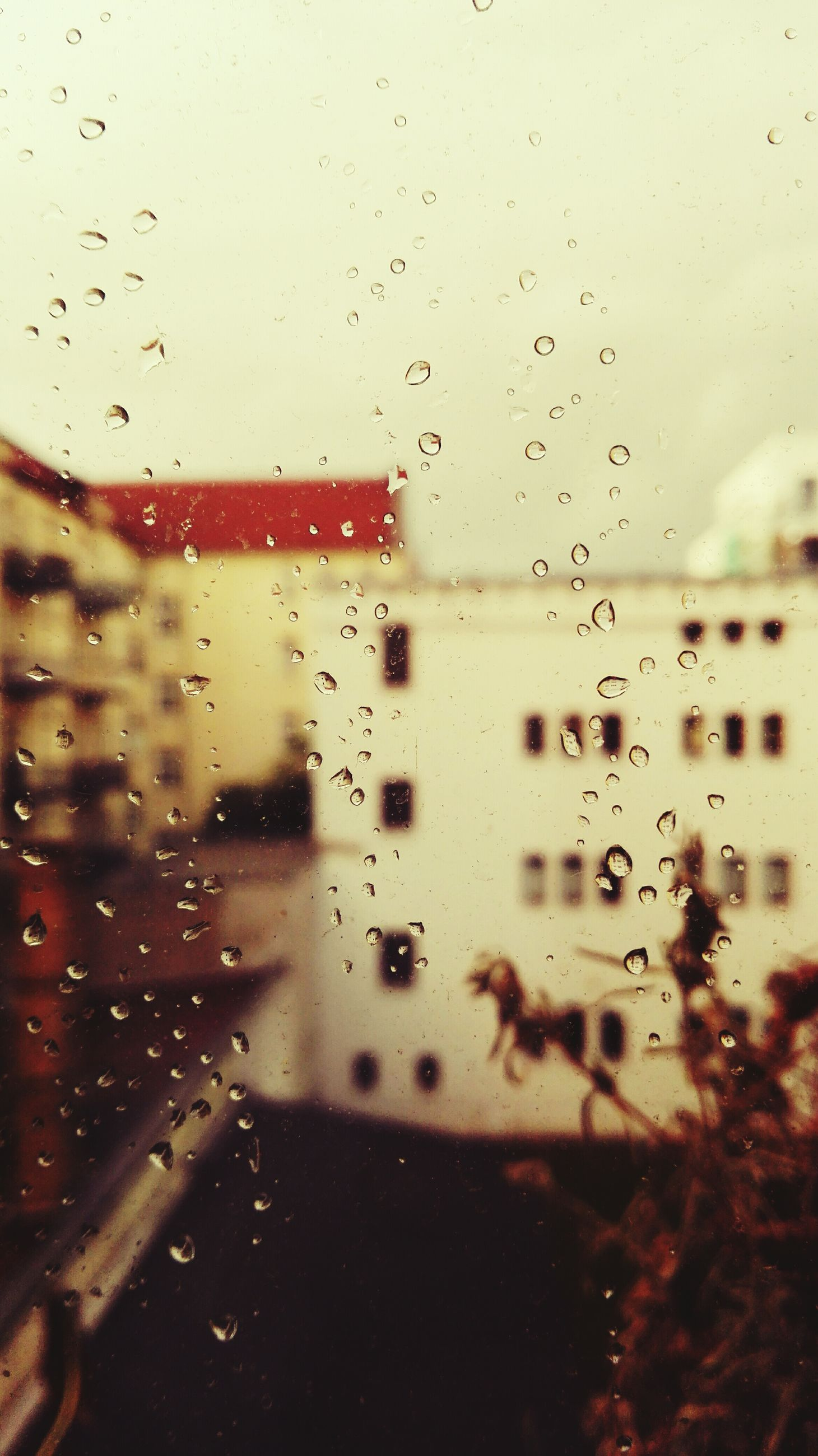 drop, wet, rain, window, transparent, water, raindrop, glass - material, weather, indoors, transportation, focus on foreground, monsoon, season, car, architecture, built structure, mode of transport, building exterior, sky