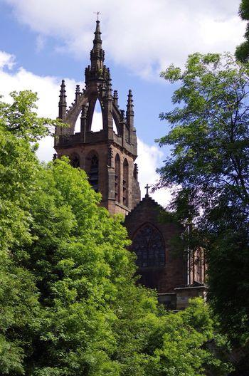 On a photo walk today through Glasgow's West End. Kelvingrove Photo Walk Summer Lush