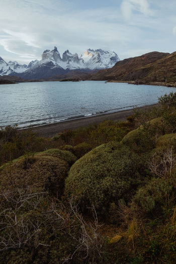 Torres del Paine National Park, Chile. Paine Mountain Chile Cuernos Del Paine Beauty In Nature Scenics - Nature No People Sky Water Plant Landscape Environment Growth Day Nature Tranquility Tranquil Scene Land Cloud - Sky Mountain Range Wilderness Grass Outdoors Mountain Peak