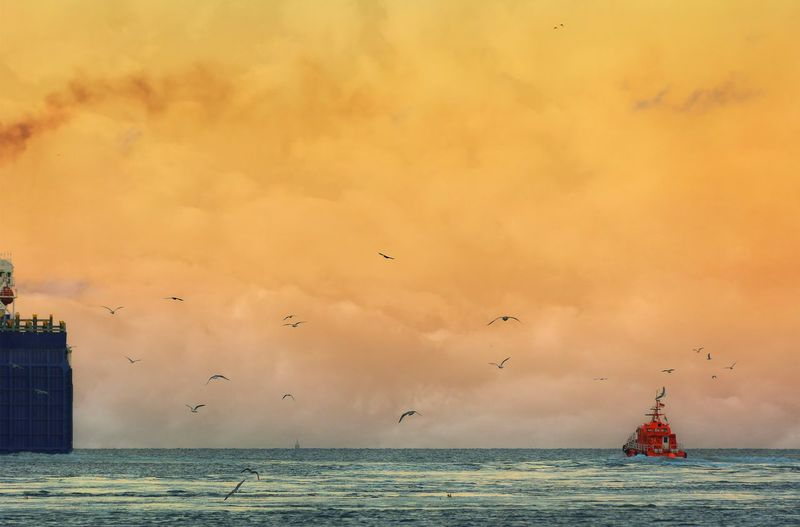 Seagulls flying over fishing trawler in sea against cloudy sky