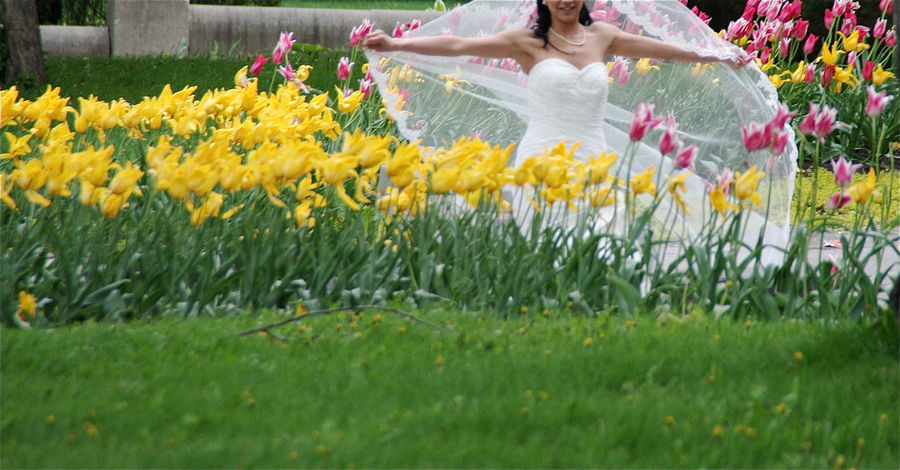 Wedding Bride Flowers Tulips Yellow Tulips Wedding Dress Wedding Day