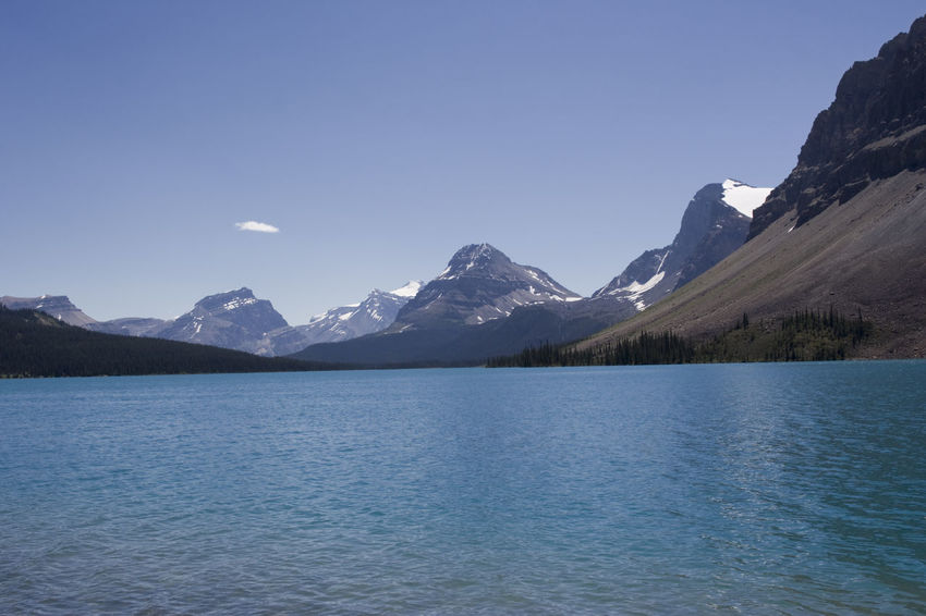 bow lake in the canadian rockies - banff national park, canada Banff National Park  Bow Lake Canada Canadian Rockies  Cold Temperature Glacier Lake Lake View Lakeshore Landscape Landscape_Collection Landscape_photography Mountain Mountain Range Mountain View Mountains No People Polar Climate Rocky Mountains Scenics Snowcapped Mountain Travel Destinations Turquoise Water Wilderness