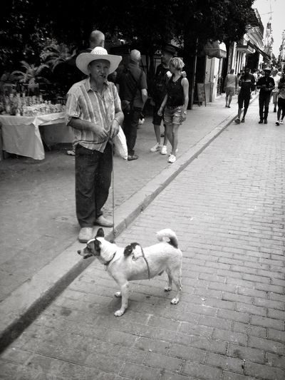 The old man, the dog and the mouse Black & White City Life Dog La Habana Lifestyles Medium Group Of People Mouse Old Man