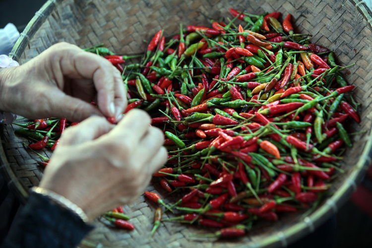 Cropped image of hands holding chili pepper