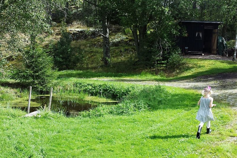 Summer Running Sunny Day Green Norway Hidden Gems