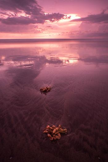 Scenic view of shore against romantic sky
