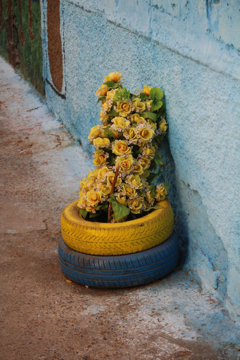 Street Decoration Architecture Building Exterior Built Structure Car Tyre Close-up Day Decoration Flower Inventive Nature No People Outdoors Planter Recycling Tyres Yellow Yellow