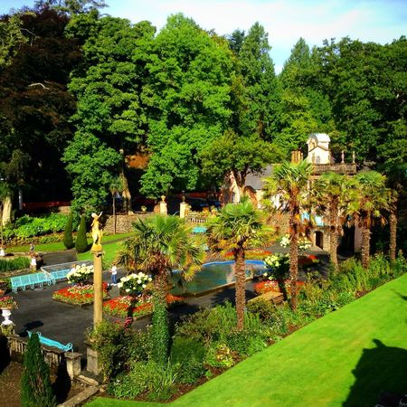 Portmeirion Wales Uk Palm Trees The Prisoner Number 6  The Village Green