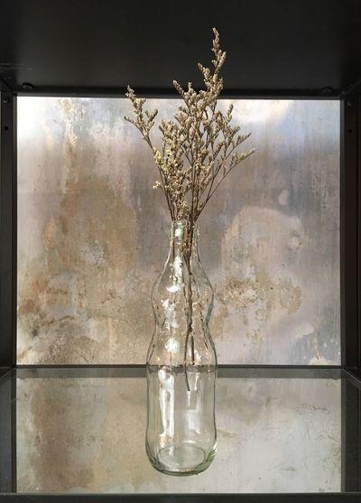 枯草 Dry flower Flowers Dry Flower  Dry Grass Glass Cafe Brown Clear Water Glasses IPhoneography Frame It! Photo Frames