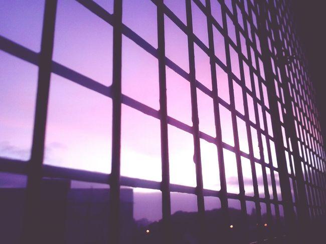 Morning Violeta Sky Cielo