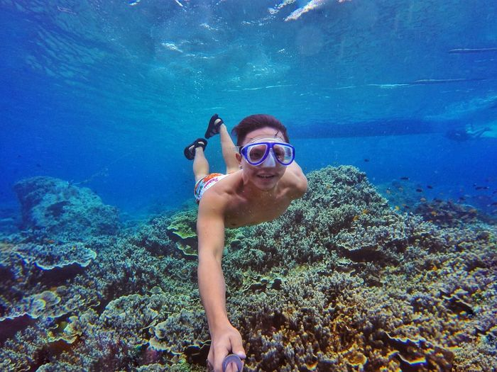 Sea Life Underwater UnderSea Swimming Adult Snorkeling Scuba Diving Coral Reefs Naturelover Coral Diving Marinelife Sea Dive Freediving Sexymen Leisure Activity Vacations Aquatic Sport UnderSea Outdoors Nature Lifestyles Freedivingphotos Swimming