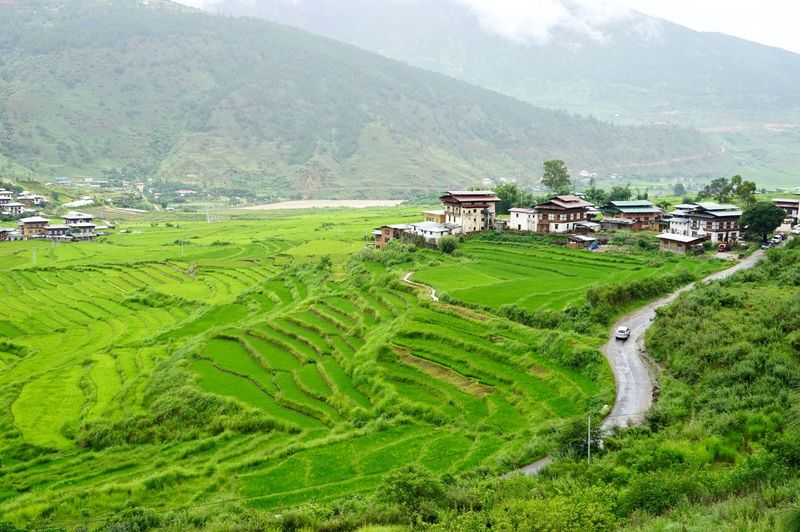 Scenic view of agricultural field and houses against mountains