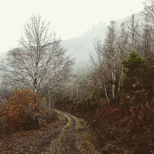 Winter Incio Lugo Galicia ribeirasacra courel