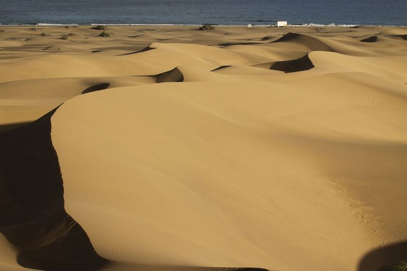 Gran Canaria Gran Canary Island Arid Climate Beach Beauty In Nature Close-up Day Desert Landscape Nature No People Outdoors Sand Sand Dune Scenics Sky Sunlight Tranquility Water