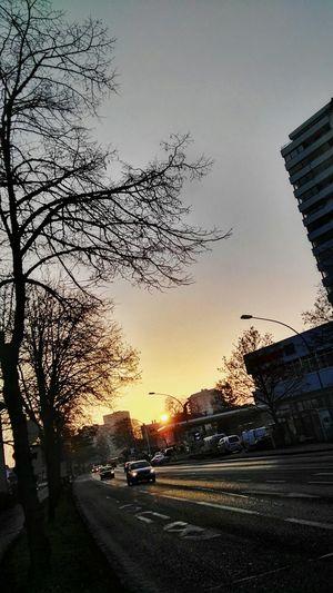 verschärft + Sunlight Transportation Skyline Sunset City Tree Outdoors Car Road No People Day in Bregenz Vorarlberg  by Eni Agip 2go