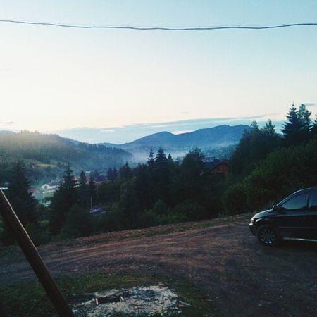 Туман, Карпати карпати горы гори Mountains forest tree