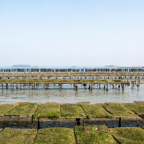 Wooden posts on pier against clear sky