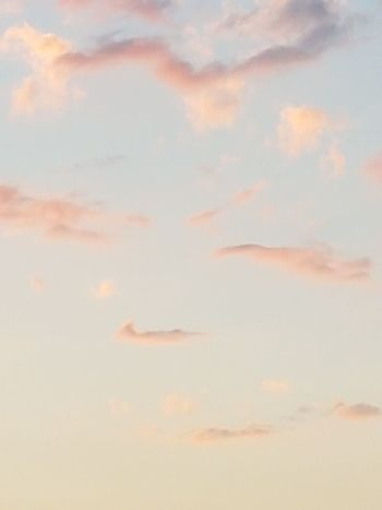 Cloud - Sky Sunset Backgrounds Cloudscape Sky Abstract Heaven Textured  Sky Only No People Scenics Nature Pastel Colored Outdoors Flying Day Pink Blue