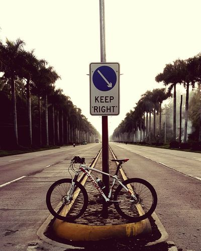 Ridin' Solo Hanging Out Exercise Bike Biking Roadscenes Roadtrip Taking Photos Check This Out Palm Trees Road To Nowhere Roadsign Riding Bike Riding Around Eyeem Philippines Fine Art Photography