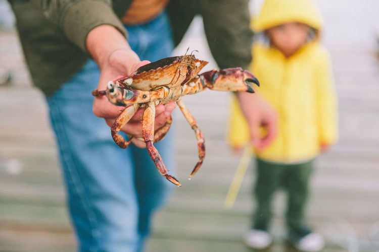 Midsection of man holding crab while standing by son