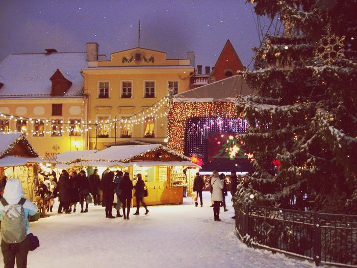 The Tourist Estonia Talin Christmas Market Winter Warm People Fantasy Cold Smile Family Love