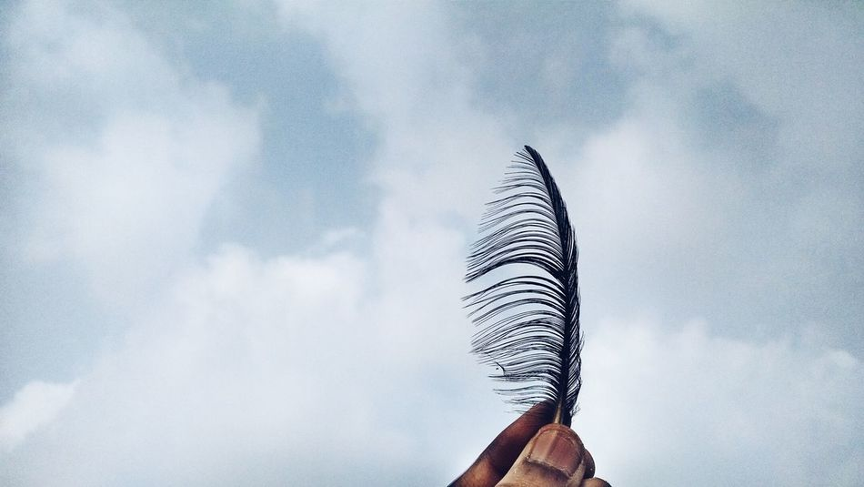Feather denoting the direction of wind .. Feather  Clouds Sky Hand EyeEm Nature Lover Wind Holding Mobilephotography Photooftheday Nature Sky And Clouds Taking Photos Tadaa Community Tamilnadu Life Is A Beach Beach Crow Creative South India No People Chennai Deceptively Simple Breeze