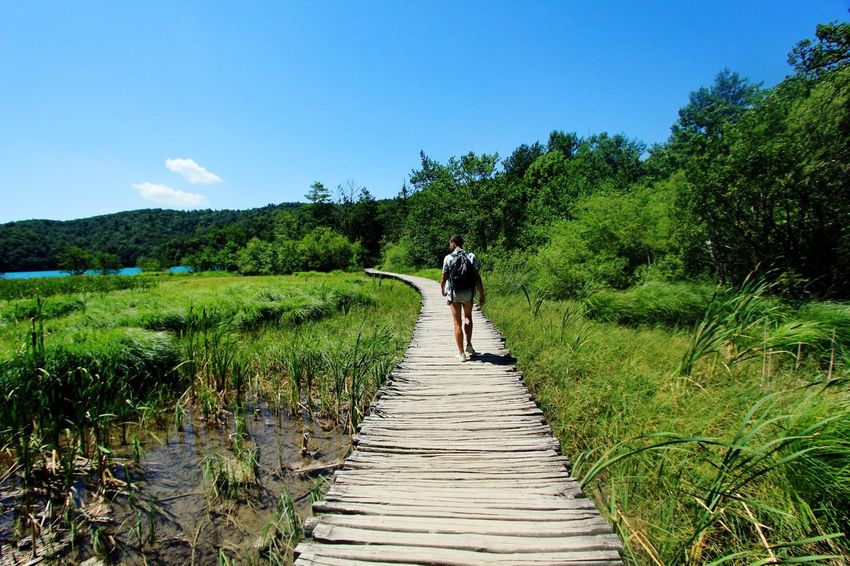 EyeEm Best Shots Lake Croatia Plitvice National Park Tree Full Length Men Walking Rear View Sky Plantation Countryside This Is Masculinity EyeEmNewHere Stories From The City Lakeside Go Higher Summer Exploratorium Adventures In The City #FREIHEITBERLIN The Street Photographer - 2018 EyeEm Awards The Great Outdoors - 2018 EyeEm Awards The Traveler - 2018 EyeEm Awards Summer Road Tripping My Best Travel Photo A New Beginning