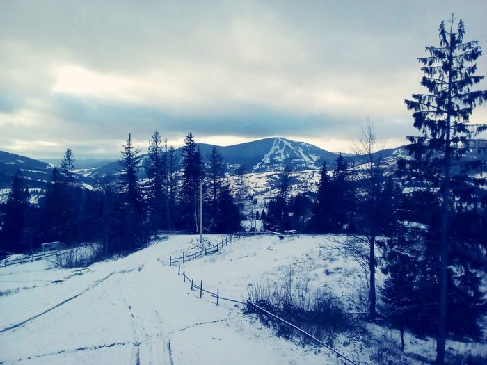 Taking Photos Check This Out Hello World Enjoying Life Ukraine Karpaty Carpathian Mountains Cooltime Winter Snow Check This Out Ukraine