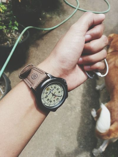 In Time ... Timex Timex Watch Timex EXpediTion WaTch