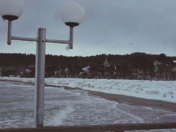 Ice Snow Christmastime NewYear Sea Balticsea Binz Weather