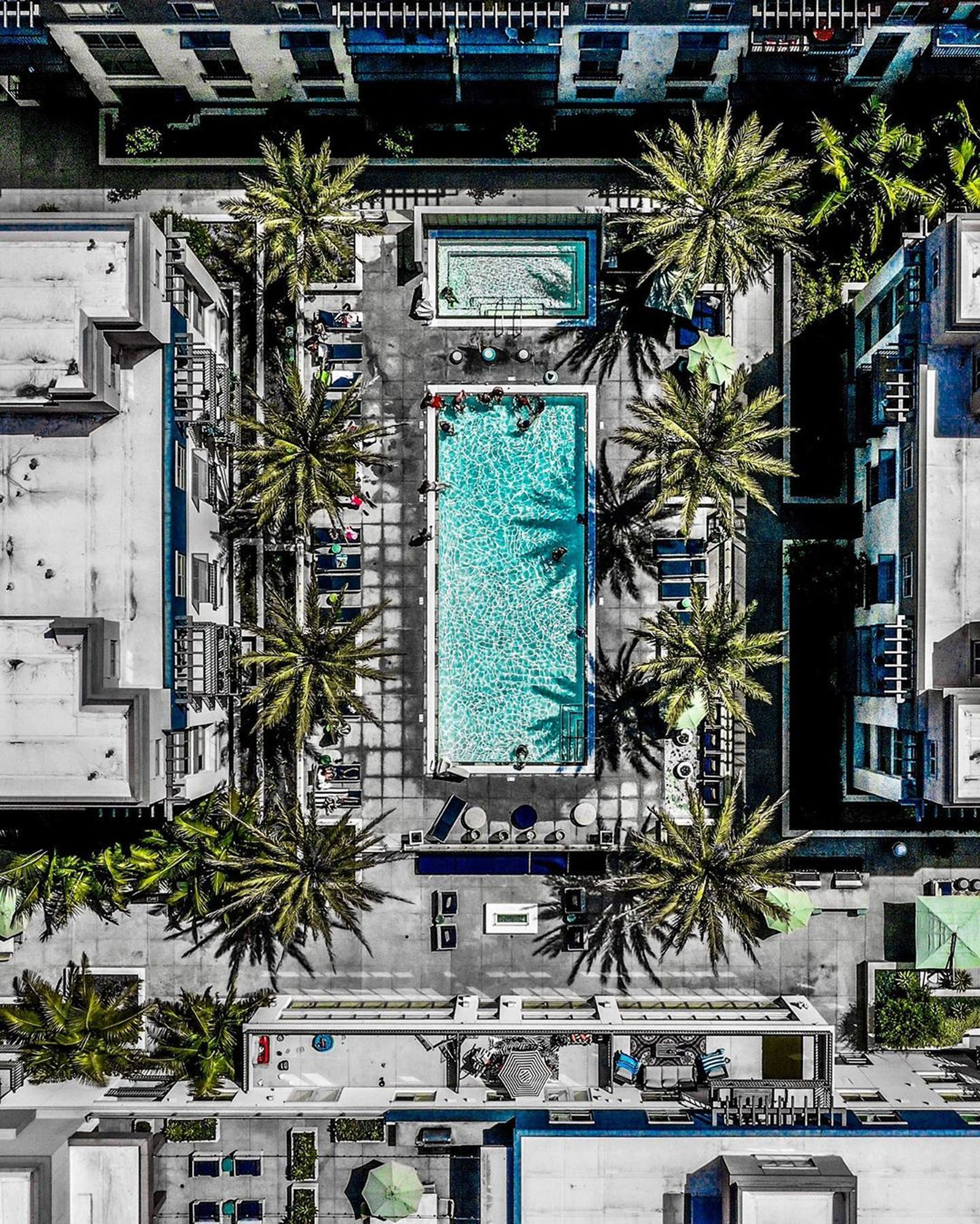 built structure, tree, architecture, building exterior, city, plant, tropical climate, palm tree, motor vehicle, day, car, outdoors, building, mode of transportation, nature, land vehicle, no people, transportation, street, apartment