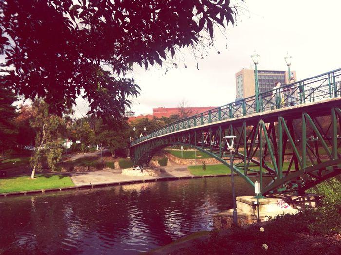 Bridge Scenary