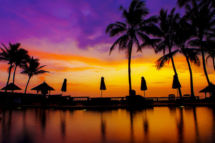 Silhouette Parasols And Palm Trees Reflection In Swimming Pool Against Sunset Sky