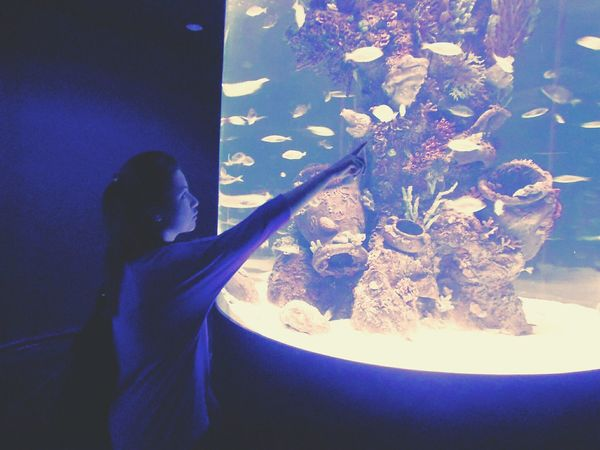 that fish ! yes that one! Vscocam VSCO EyeEm Nature Lover Animals Fish Museum Ocean Aquarium Antalya Turkey Traveling Travel Travel Photography Discover Your City Exploring New Ground Waterworld Art Art, Drawing, Creativity BestEyeemShots Besteyeemtravel Girl Model Blue Sea Beautiful