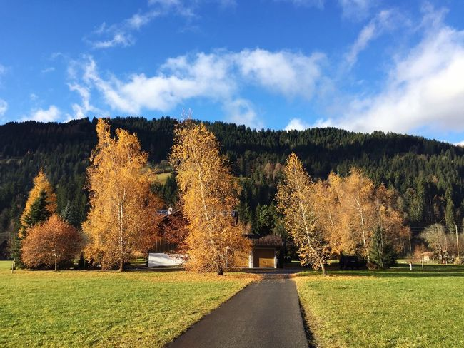 Autumn Autumn Leaves Autumn Colors Authentic Moments Switzerland Alps Switzerland Berner Oberland Gstaad Tranquility Mountains Peace Purity