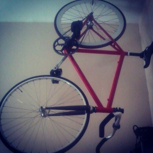 Just hanging out. Toohottoride Cyclistsdilemma Nahhimjusttoolazy Yolo thefixedlife theshitinmyhousefloats stayfixed classyhoe cleanedthebitchyesturday wellridelateriguess tillthenpeace